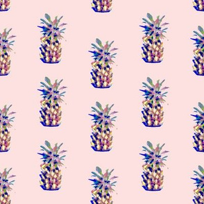 Pineapple Party in Pink