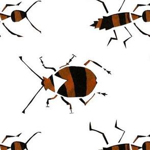 Tiger_Beetles