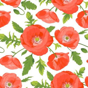 Seamless pattern with beautiful red poppies