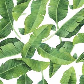 Watercolor Banana Leaves