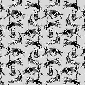 haunted cat skeletons gray and black