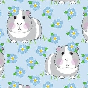 large guinea-pigs-and-forget-me-nots on blue