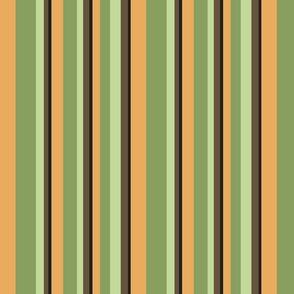 golden_sebright_stripe