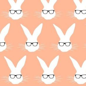 Geeky Bunny Salmon