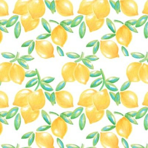 Small Yellow and Green Lemons