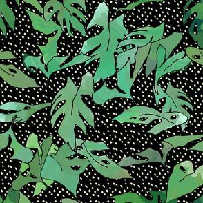 Starry Jungle