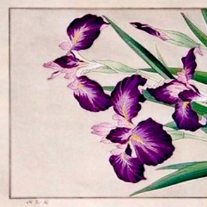 Grape Japanese Iris wood block