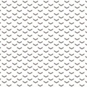 Whitney Arrows on White