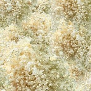 Blooming pearls