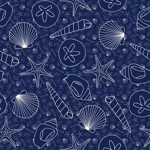 Shells on Navy Blue