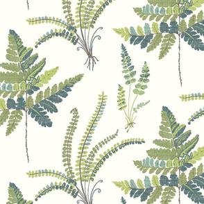 Fern Botanical