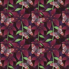 purple lilies and free spirit moth