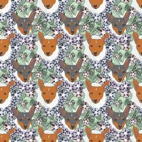 Floral Toy Fox Terrier portraits