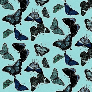 Turquoise jungle butterflies
