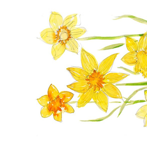 Spring Narcissus Mix