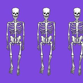 Skeletons on Purple Background