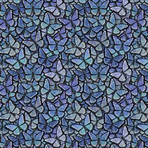 butterfly kaleidoscope - blue heras