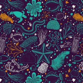 Coral Reef - ocean water sea animal turtle starfish eel octopus underwater fish