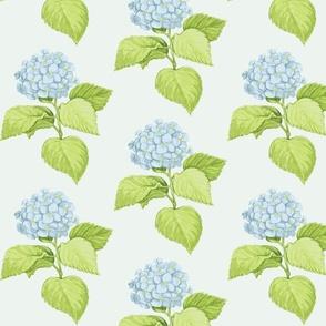 Blue Hydrangeas #EDF3EF