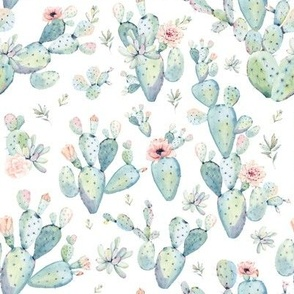 """8"""" Love Dreaming Boho Style Succulents"""