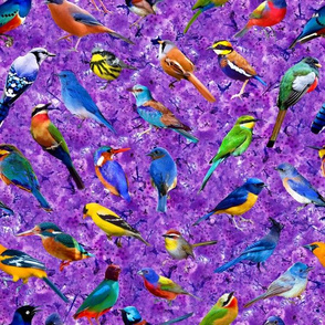 Brilliant Birds 2 - Violet Blossoms background