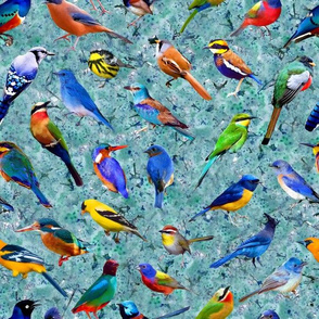 Brilliant Birds 2 - Turquoise Blossoms Background