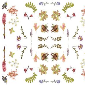 dainty flowers w birds