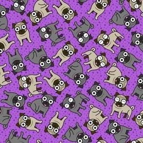 Pug-a-Dot (Small Purple)