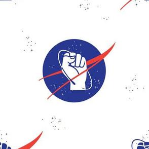 Rogue NASA 1a
