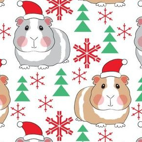 large guinea-pigs-with-santa-hats