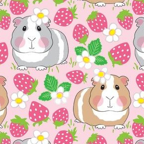 large guinea-pigs-in-a-strawberry-patch