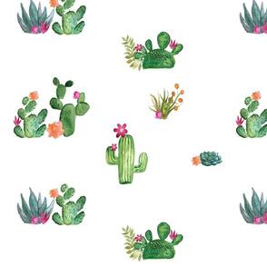 Cactus Floral