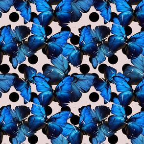 Shattered Butterfly Polka Dot
