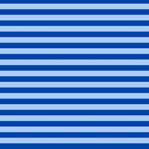 Stripe- Blue on blue