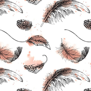 hand drawn black feathers with apricot coloured spots || aquarelle