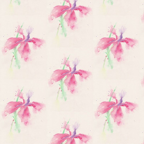 Delicate_Floral
