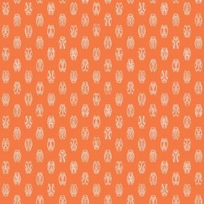 cigales orange
