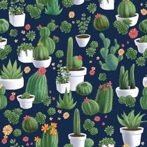 Succulent_Cacti_8x8__150__blue_