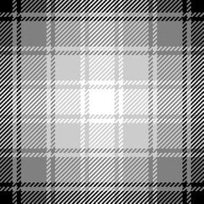 06637649 : tartan : greyscale