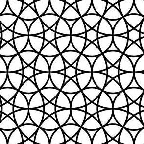 06637804 : R6circlemix : black + white