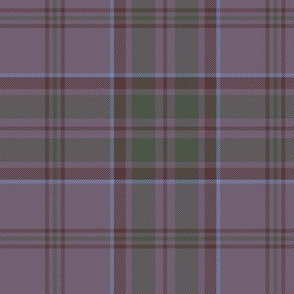 "Wicklow County tartan, 6"" warm grey"
