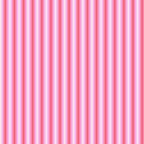 Daisy_Dayz_Pink_Stripes