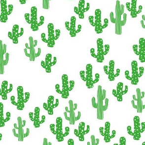 Green cactus raw summer garden botanical cacti design