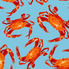 Cooked Crabs on Blue