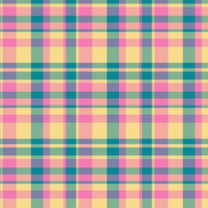 Madras Plaid Candy Colored Straight Set