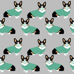 Corgi tri colored operating room doctor fabric grey