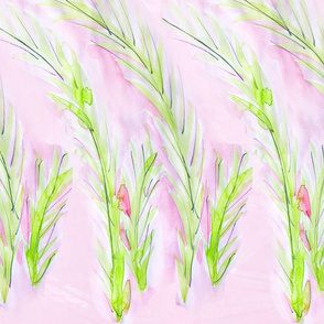 Windy Ferns