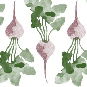 Watercolor beets