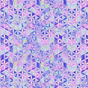 12 Hand Drawing Mandalas Pattern Pink