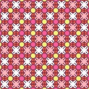 Broken Windows - Pink